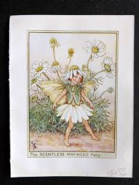 Cicely Mary Barker C1940s Flower Fairy Print. Scentless Mayweed Fairy